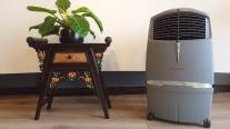Honeywell CL30XC: Cứu tinh cho phòng khách và phòng ăn những ngày nắng nóng