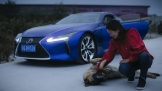 Lexus phát hành phim ngắn Jouneey in Taste
