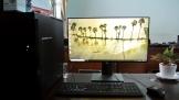 Dell U2419HC: Cho giới văn phòng