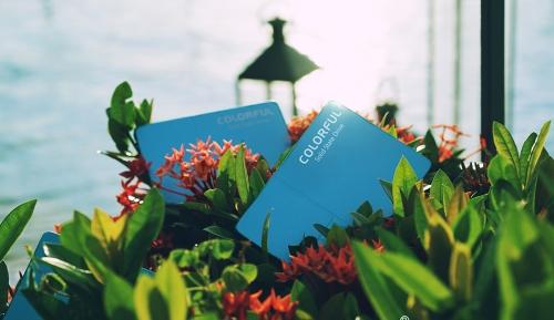 Colorful SL500 960 Blue L.E thêm phiên bản màu xanh đại dương