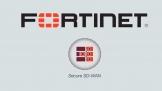 Fortinet tiếp tục vào top 3 thương hiệu thiết bị mạng hàng đầu