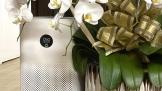Mi Air Purifier 3H: Món ngon nhà làm ngon như nhà hàng