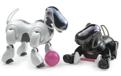 AIBO có thể đùa nghịch như những chú chó đáng yều. Ảnh: Sony