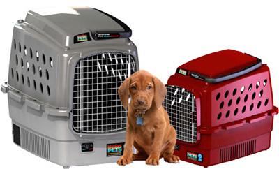Komfort Pét Carrier - phòng điều hòa cho chó